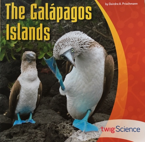 Galapagos cover 2019